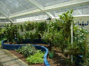 jardin-botanico-chapultepec-ciudad-mexico-mexico_04