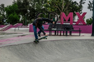 skate (3)