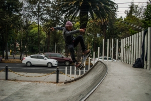 skate (4)