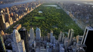 new-york-overview-1400x788-1